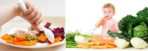 2 fotos noticia nutricionista alimentos solidos