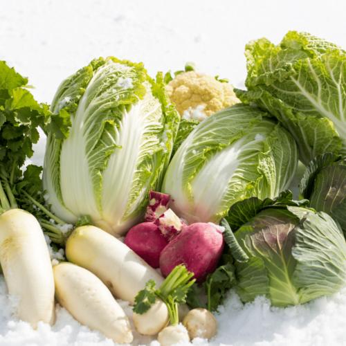 Verduras de temporada: invierno